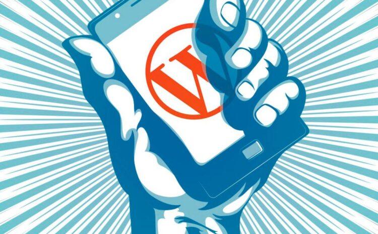 ¿Por qué WordPress es uno de los CMS más empleados para Webs institucionales?