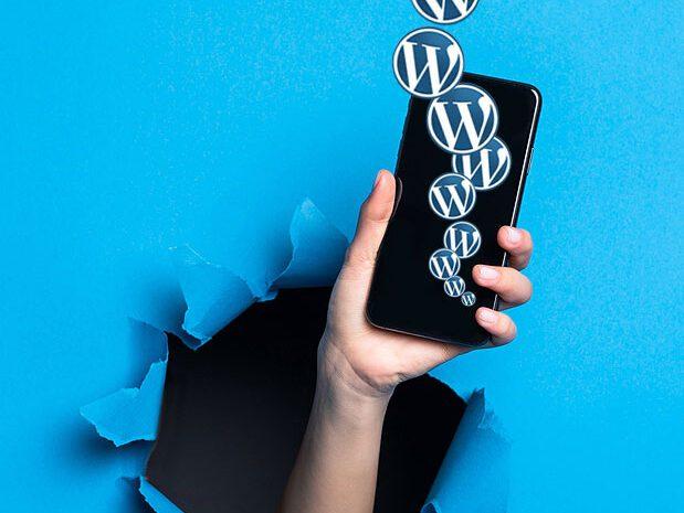 En camino al posicionamiento de stories en tu sitio WordPress